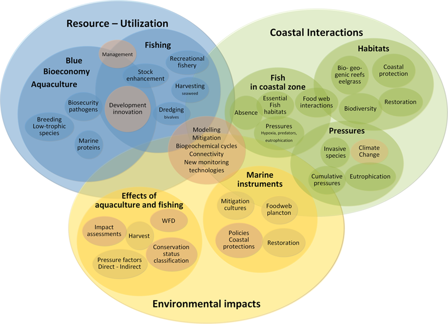 Research areas in Section for Coastal Ecology